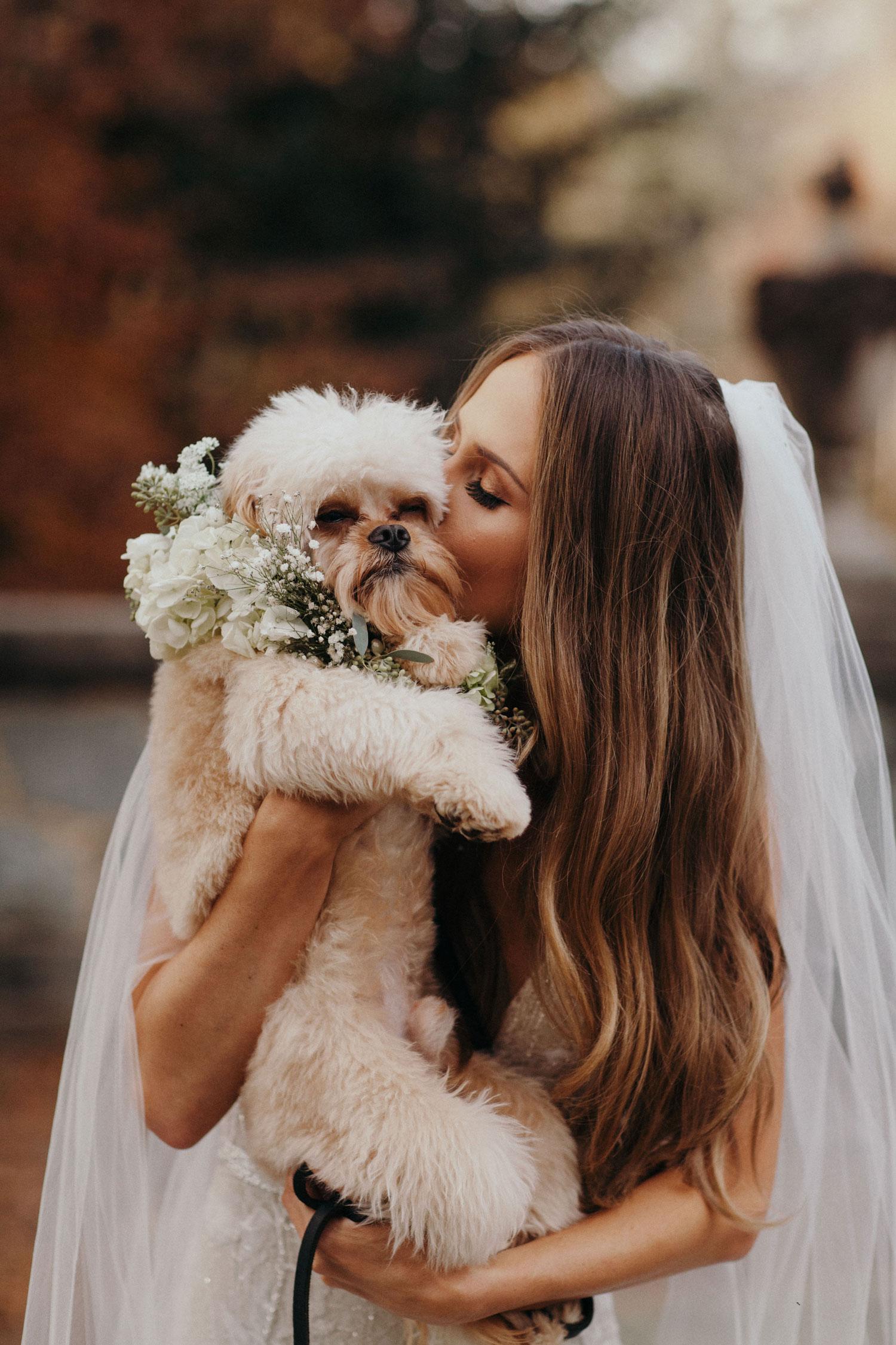 suzanna villarreal kissing dog on cheek before wedding to alex wood wedding ideas
