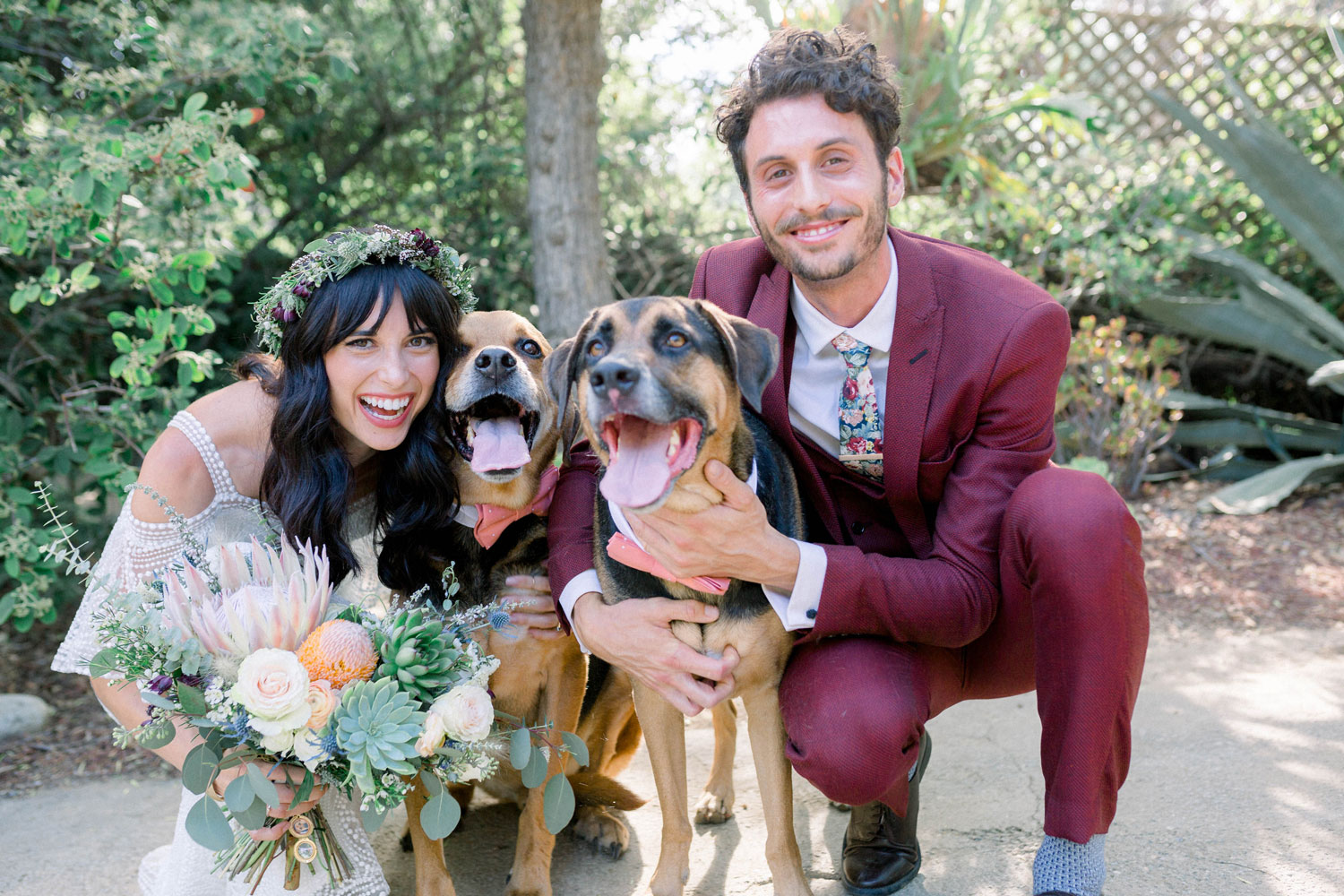 bride and groom with two rescue dogs best men wedding ideas vegan wedding