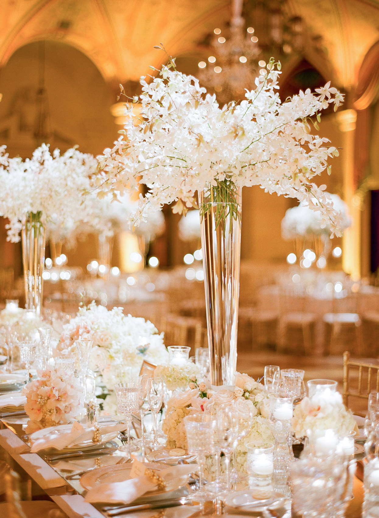 tall glass vase with white dendrobium orchid flowers at the breakers centerpiece ideas