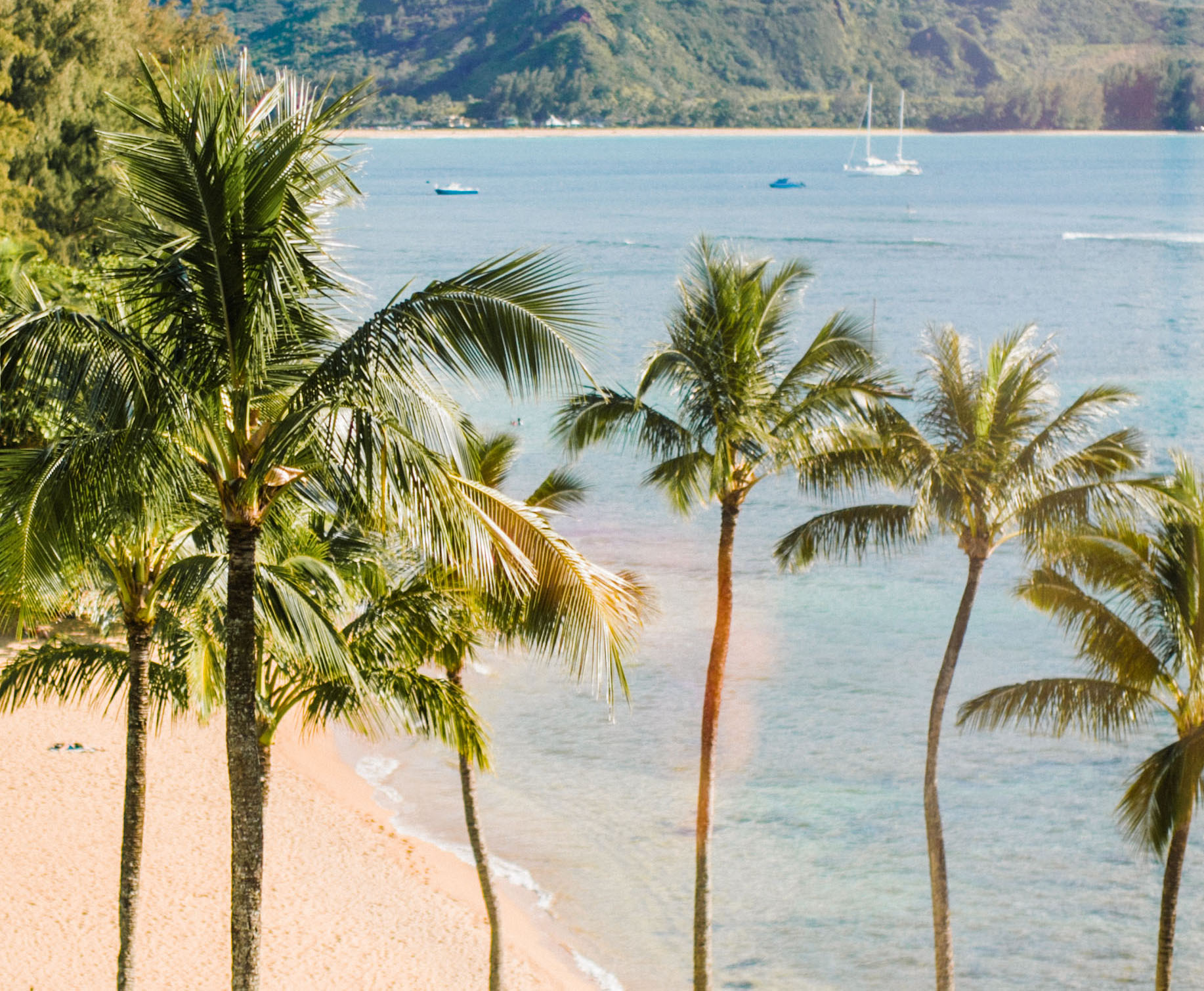 palm trees overlooking ocean in hawaii, how to prep for your honeymoon
