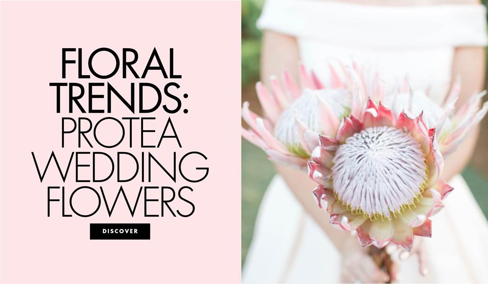 11 Inspiring Protea Flower Arrangements for Weddings